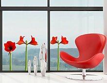 WTD mantiburi FensterSticker No.SB51 Amaryllis Set I 100x66cm Wandtattoo 100x66cm/nicht spiegel-/seitenverkehr