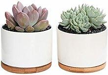 WUHUAROU 2 Stück Keramik Sukkulenten Töpfe