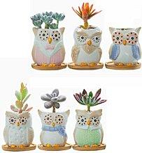 WUHUAROU 6 Stück Keramik Sukkulenten Töpfe