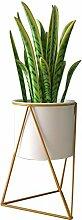 WUHUAROU Blumentopf Metall Pflanze Stehen mit
