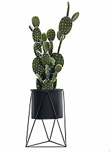 WUHUAROU Metall Pflanze Stehen mit Blumentopf,