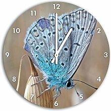wunderschöner blauer Schmetterling, Wanduhr