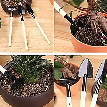 WWWL Gartenwerkzeug Set Sukkulenten Pflanzen
