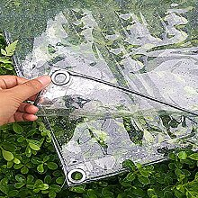WZHTARPAULIN Transparente Plane Plane