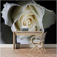 Xbwy Schwarz Weiß 3D Foto Tapete Tapeten Für