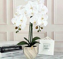 XHOPOS HOME Künstliche Pflanzen Künstliche Blumen Orchideen Topfpflanzen Floristik Home Zimmer Büro dekoratives Zubehör