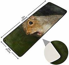 XiangHeFu Lustige Eichhörnchen Dekor Fußmatte