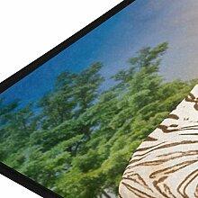 XiangHeFu Teppiche Tier Tiger Rest Stein weich 39