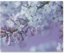 XiexHOME Beste Wandfarbe Lila Violett Lila Blume