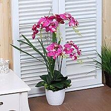 Xin Home Phalaenopsis Simulation Flower Set Wohnzimmer Künstliche Blumen Zimmer Vase Blumen Produkte, Phalaenopsis B/Rose