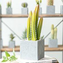 XIN HOME Simulation von Multi-Meat Kleine grüne Pflanze falsch Cactus Topfpflanzen kreative Dekoration, in den Bergen