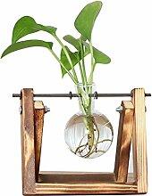XINFULUK Desktop Glas Pflanzer Glühbirne Vase mit