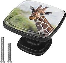 Xingruyun Kleiderschränke Knäufe Giraffe Kommode