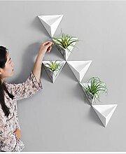 Wand Blumentopf preiswert online kaufen | LionsHome