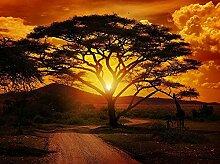 XiuTaiLtd Fototapete Afrika Sonnenuntergang