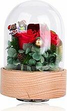 XJ&DD Ewige rote Rose Glasabdeckung