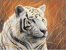XLi-You 3D Tapete Fresko Custom 3D White Tiger