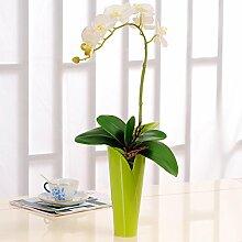 XPHOPOQ Upscale Schmetterling Orchidee Kit stilvolle Orchidee Modern Stil Indoor Home Dekoration Weiß Orchid