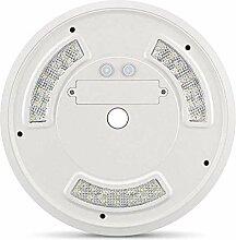 Xuba 42 LEDs, solarbetriebene Fahnenmast