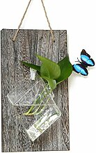 XUELIEE Schreibtisch aus Glas Blumentopf Vase