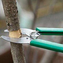 XWYGJ Garten-Baum Zweige Ring Barking Cutter