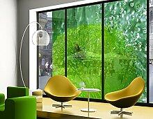 XXL Fensterbild Green Apple Apfel Natur Obst Grün Frucht Apfel Größe: 380cm x 432cm