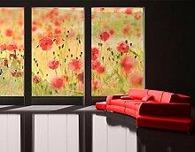 XXL Fensterbild Summer Poppies Blüten Pflanzen