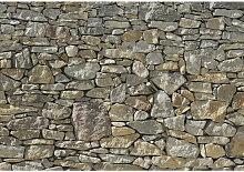 XXXLutz FOTOTAPETE, Grau, Papier, Mauer, 368x254 cm