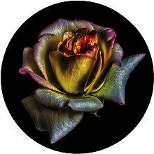 XXXLutz GLASBILD Blumen , Multicolor, Glas, 1.4 cm