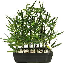 XXXLutz KUNSTPFLANZE Bambus , Grün, Keramik,