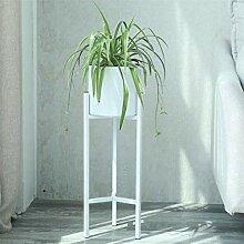 XXY.XXY Pflanzen Display Rack Topf Steht Indoor
