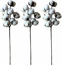 XYXCMOR Getrocknete Baumwolle Blumen Künstliche