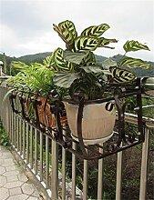 XYZ Eisen-Geländer Blumentopf Regale, hängende Pflanze Regal, Wand-Blumen-Regale für Balkon Empfindlich haltbar ( farbe : Bronze , größe : L-96cm )