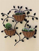 XYZ Europäische kreative Eisen-Wand-hängende Blumen-Zahnstangen, hängende Blumen-Töpfe Regal, Innenwand-Dekoration-Blumen-Halter Empfindlich haltbar ( farbe : Schwarz )
