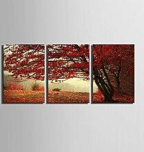 Y&M Herbst Blätter der Baum Dekoration Malerei, rahmenlose Gemälde, Wohn-Wohnzimmer Dekoration Malerei , 35*50*3