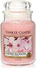 Yankee Candle Cherry Blossom Housewarmer Duftkerze