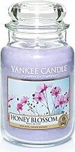 Yankee Candle Duftkerze, Glas, Violett, Large
