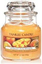 Yankee Candle Mango Peach Salsa Housewarmer