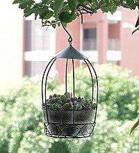 YANZHEN Eisen Blumentopf Persönlichkeit Vogelkäfig Blumentöpfe Kann hängen