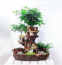 YANZHEN Hirtenwald Traumharz Blumentöpfe Eingemachte Büro Desktop Ornamente Home Decoration