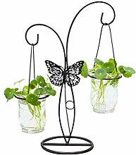 Yardwe 1 Stück Hydroponic Container Pflanze