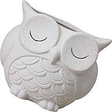 Yardwe Keramik Eule Sukkulente Topf Nette Eule