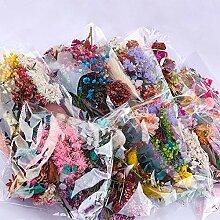 YASEking. 1 Beutel Echt Getrocknete Blumen
