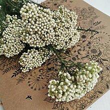 YASEking. 20g / Bouquet, Natur Erhaltene Frisch Mi