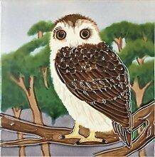 YH-Arts 6 x 6 Zoll, B OWL-Art Fliesen, Mehrfarbig