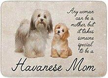 YnimioHOB Bad Matte Hund Havaneser Mutter Haustier