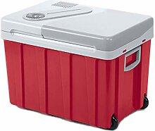 YNWJ 40L Kiihlbox Klein Auto Car Refrigerator