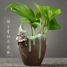 youjiu Dekoration Kreative Aquakulturvase Mit
