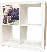 YOURDEA - Aufkleber Möbel Sticker für IKEA Expedit / Kallax Kommode Regal mit Motiv Florian