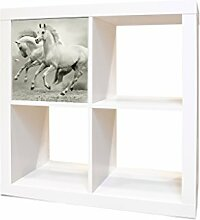 YOURDEA - IKEA KALLAX / Expedit Regal Möbelaufkleber mit Motiv Wilde Pferde